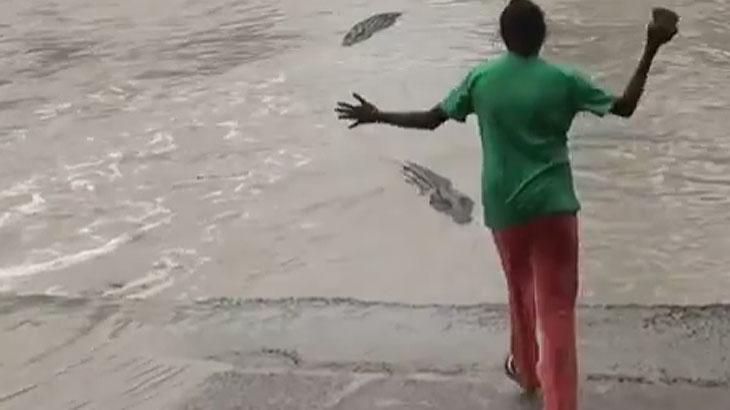 Teria coragem? Mulher espanta crocodilo gigante usando chinelo