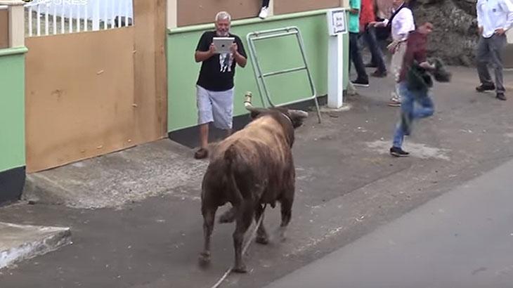 Homem é ferido por touro enquanto filmava animal com tablet