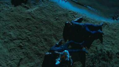 Cena de A Força do Querer com Zeca e Ruy caídos na areia à beira do rio