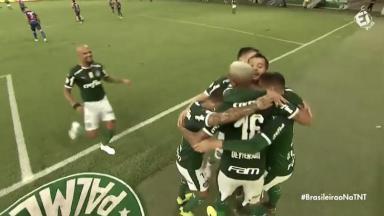 Palmeiras na TNT