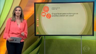 Apresentadora do Globo Rural durante o programa