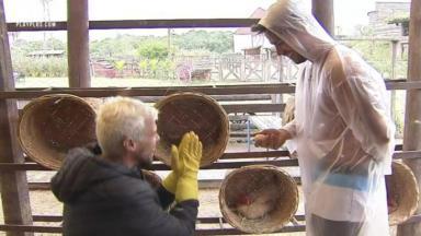 No galinheiro, Lipe se ajoelha ao lado de Mariano pedindo proteção para cuidar de galinhas em A Fazenda 2020