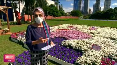 Ana Maria Braga com flores do logo do Mais Você