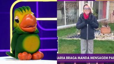 O papagaio Louro José participou do programa Se Joga e recebeu mensagem carinhosa de Ana Maria Braga