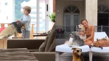 Luisa Mell, seu filho e cachorros
