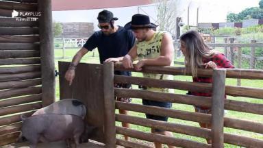 Diego, Hari e Lucas estão na grande final do reality show