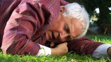 Cena de Ti Ti Ti com Mario Fofoca no celular e deitado num gramado