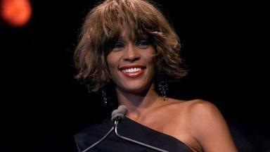 Whitney Houston virou meme por causa da CPI da Covid