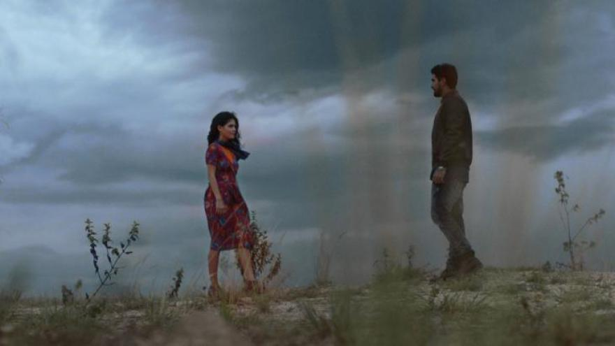 Órfãos da Terra mostrar a história de amor entre Laila (Julia Dalavia) e Jamil (Renato Góes). O casal foge da Síria para viver o romance no Brasil e vai enfrentar as maldades de Abdallah (Herson Capri) e Dalila (Alice Wegmann).