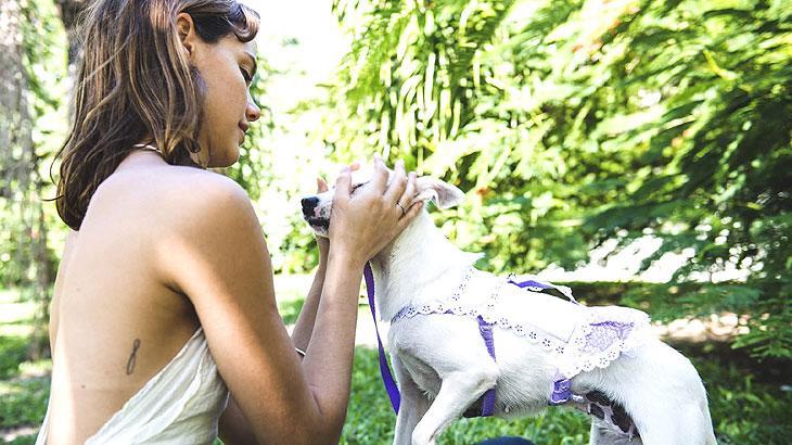 Laura Neiva conhece o projeto Amizade Não Se Compra, Adote