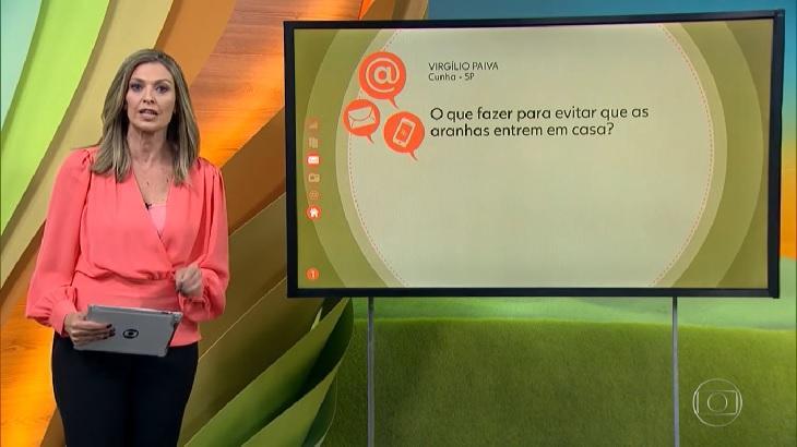 Globo Rural ensina a evitar aranha em casa e bomba no Ibope. Foto: Reprodução/Globoplay