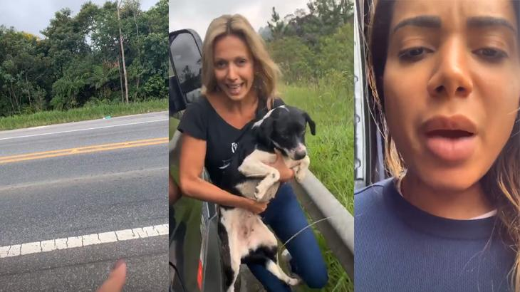 Luisa Mell e Anitta com cachorro