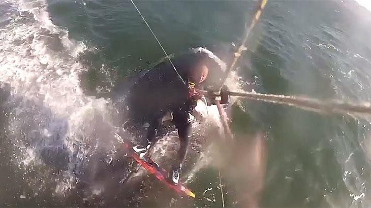 Homem pratica kitesurf e passa por cima de baleia gigante; veja