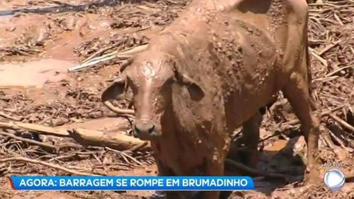 Globo troca cobertura de rompimento de barragem por