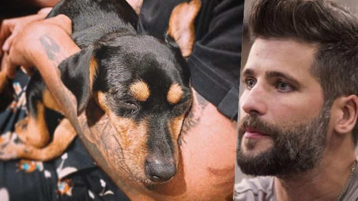 O ator Bruno Gagliasso e cachorra Lasanha