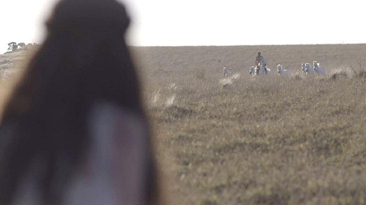 Cris tem sonho com cavalos