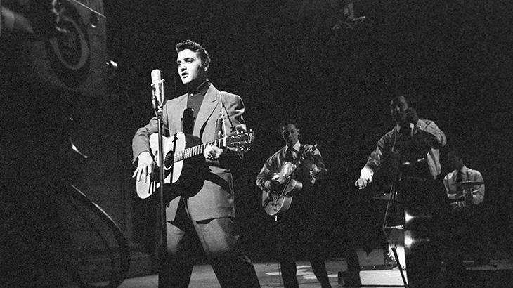 Elvis e outros