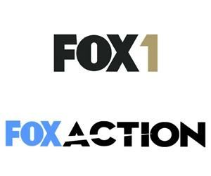 fox1-foxaction.jpg