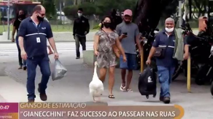 Ganso Gianecchini passeando pelas ruas no Encontro