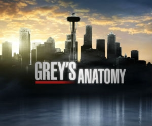 greys-anatomy-serie.jpg