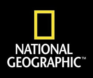 Nat Geo estreia quatro programas em sequência nesta quarta; saiba mais
