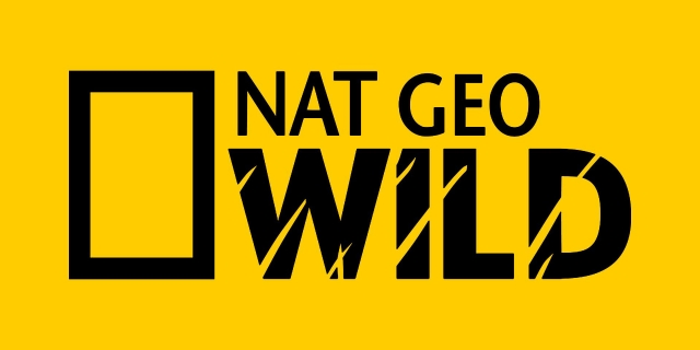 Nat Geo celebra crescimento na América Latina