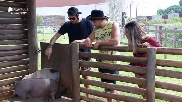 Peões finalistas se despedem dos animais no reality show A Fazenda 2019. (Reprodução)