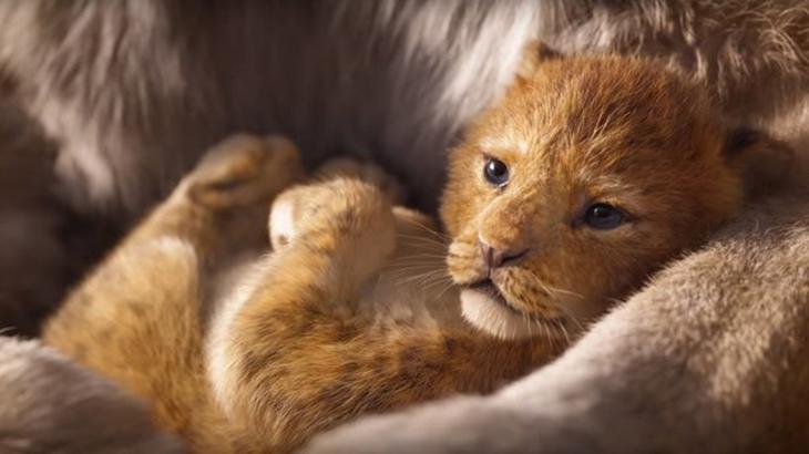 O Rei Leão: Filme que ganhou live-action neste ano é o primeiro lugar da lista - Divulgação