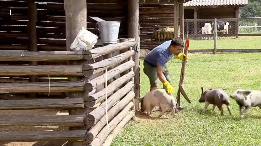 Jorge Souza cuida dos porcos em A Fazenda 11