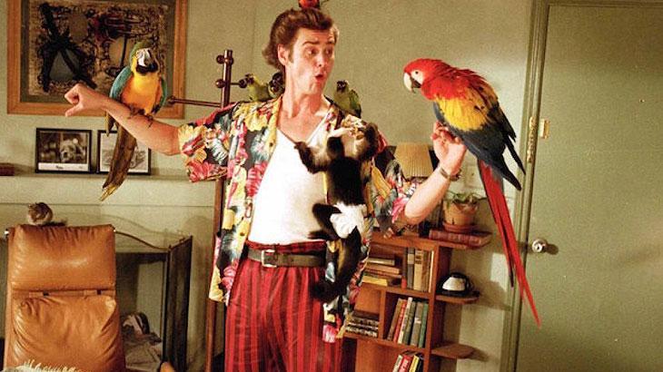 Detetive Ace Ventura deve retornar aos cinemas em breve