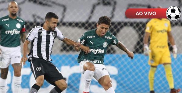 Botafogo-SP x Palmeiras