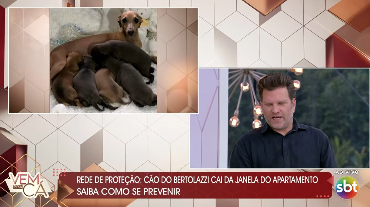 Carlos Bertolazzi chorando ao vivo no SBT