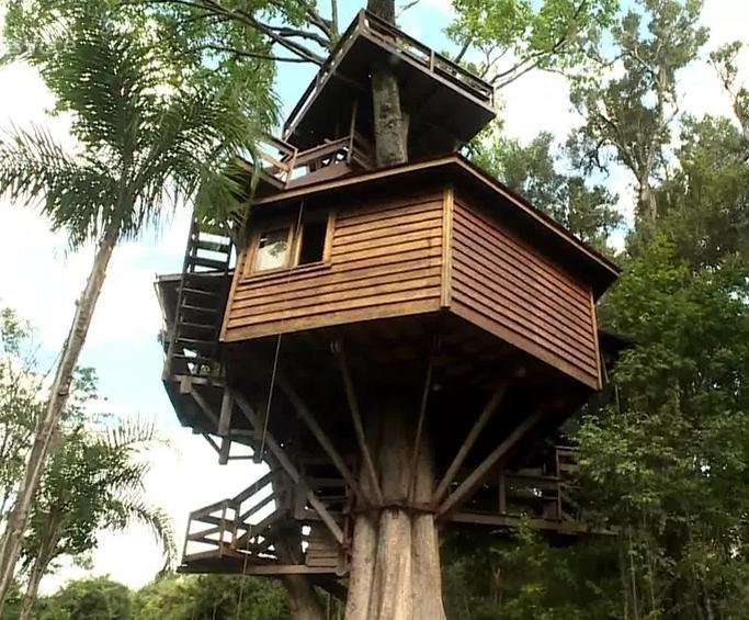 Conheça a casa na árvore que Galvão Bueno passa a quarentena