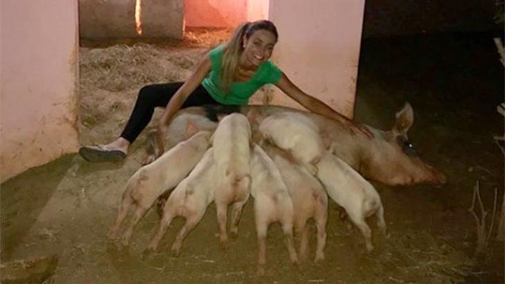 Paula com porquinhos