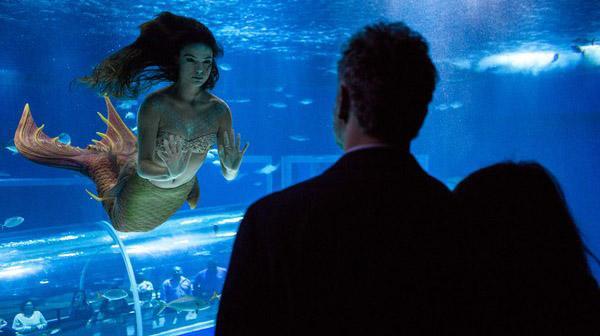 Ritinha em aquário