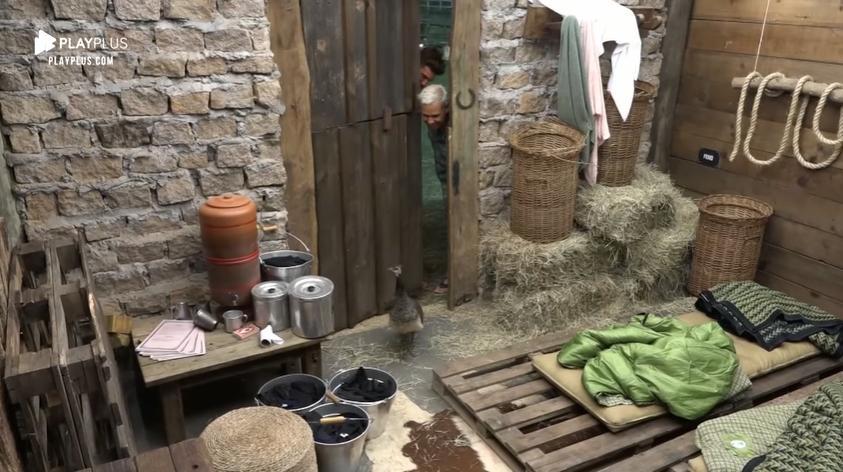 Animal invadiu a baia e causou confusão em A Fazenda 2019