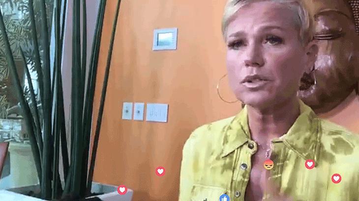 """Xuxa fala sobre declarações de Datena: \""""não me importo, meus advogados resolvem\"""""""